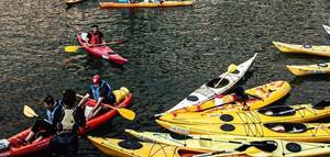 kayaks in water